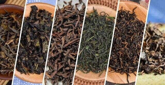 Discover True Single-Origin Tea
