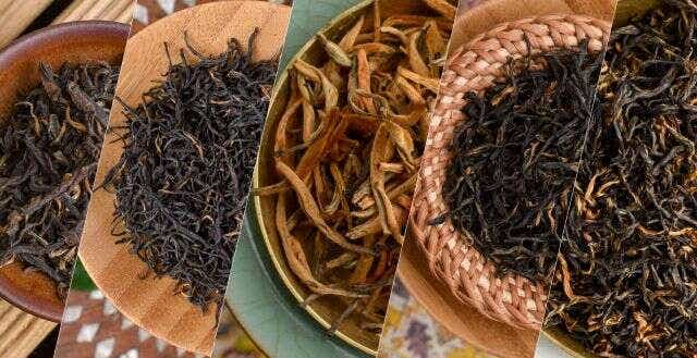 Liquid Gold: Tasting through China's Golden Buds Black Teas