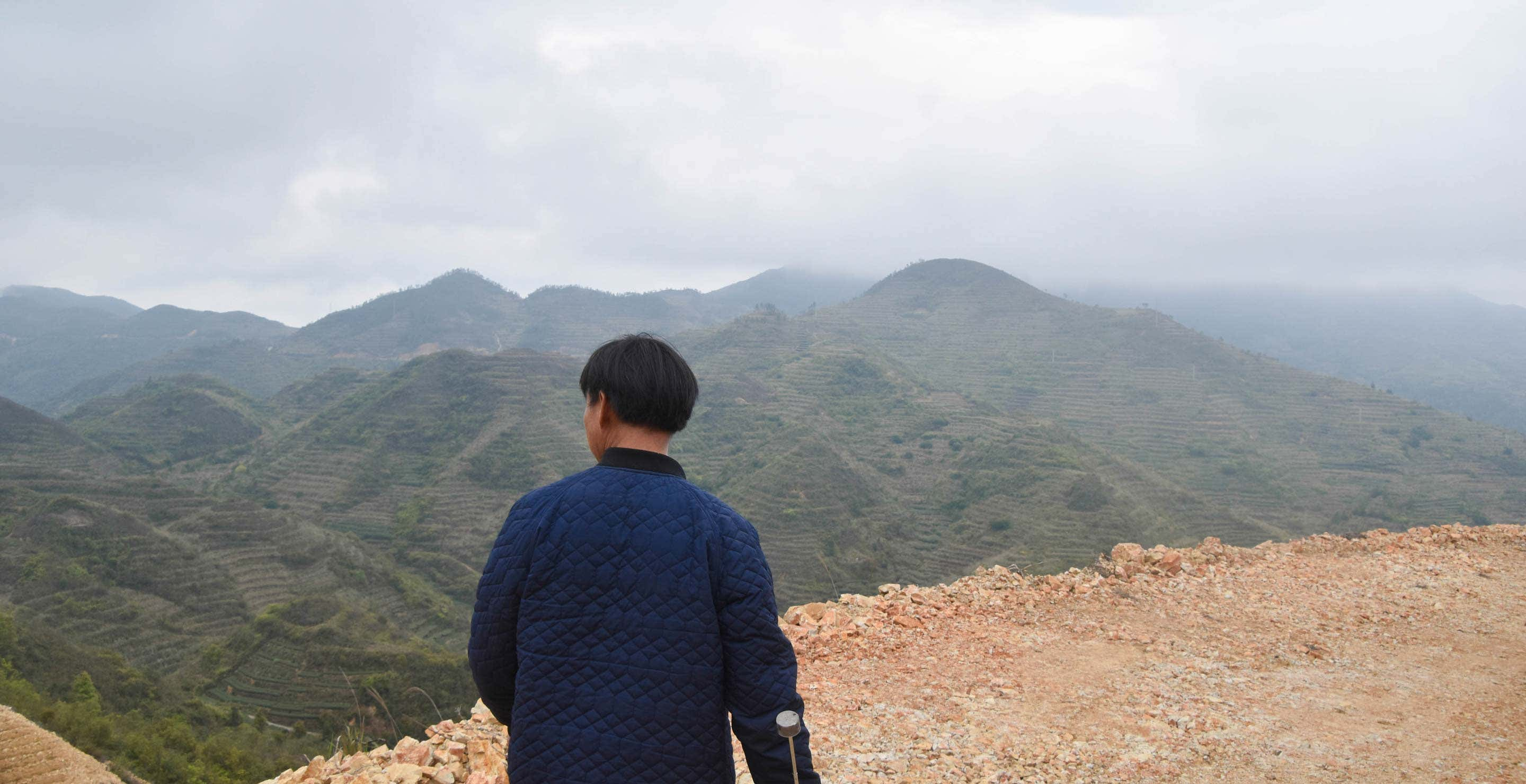 Field Guide, part seven: Daping, Anxi