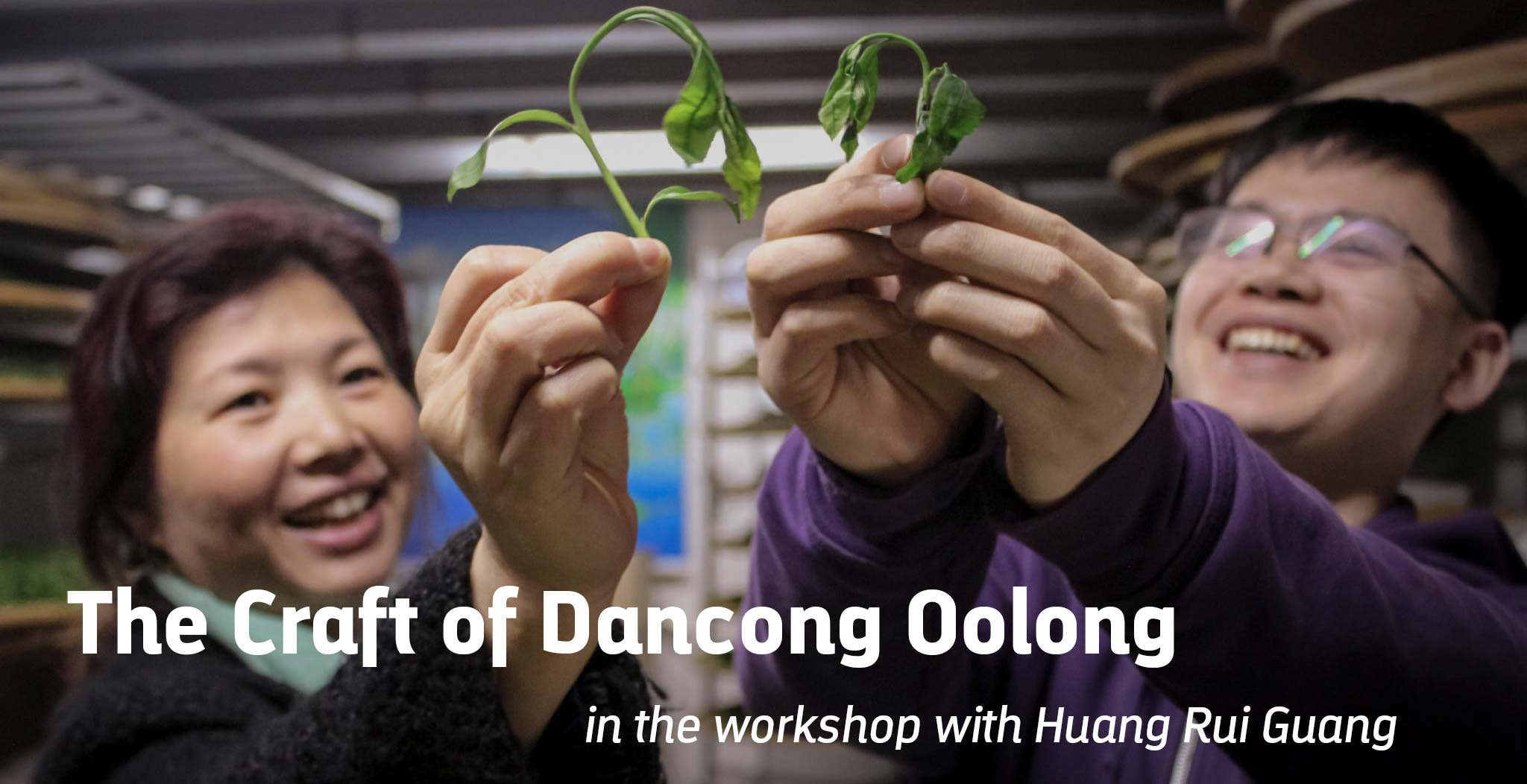 The Craft of Dancong Oolong