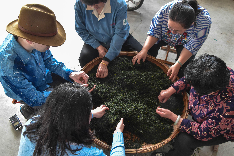 Family farming and the future of tea