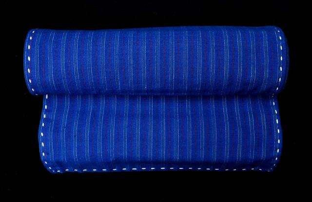Striped Blue Runner