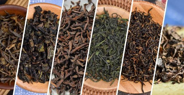 Discover True Single-Origin Tea