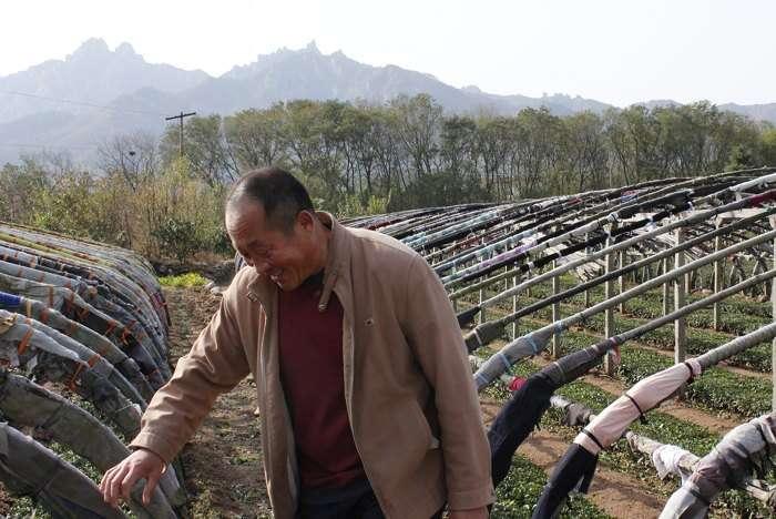 Mr. He of Laoshan Village