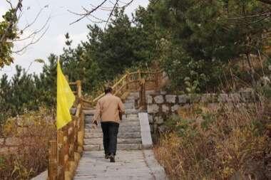 Mr He Climbs Laoshan