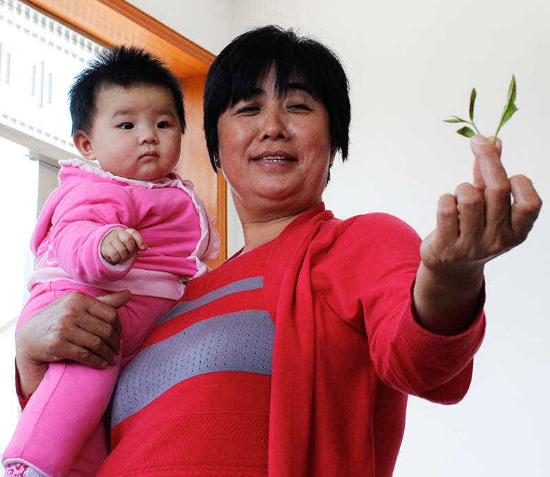 MrsHe NiuNiu Laoshan Green Fresh Leaf-