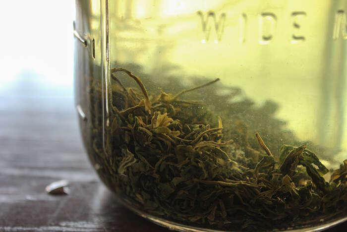 Loose Leaf tea sinks to the bottom overnight