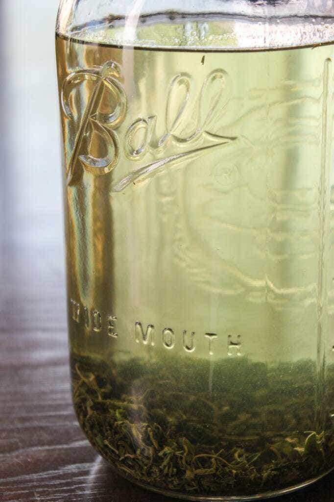 cold brew laoshan green BREWINGtall