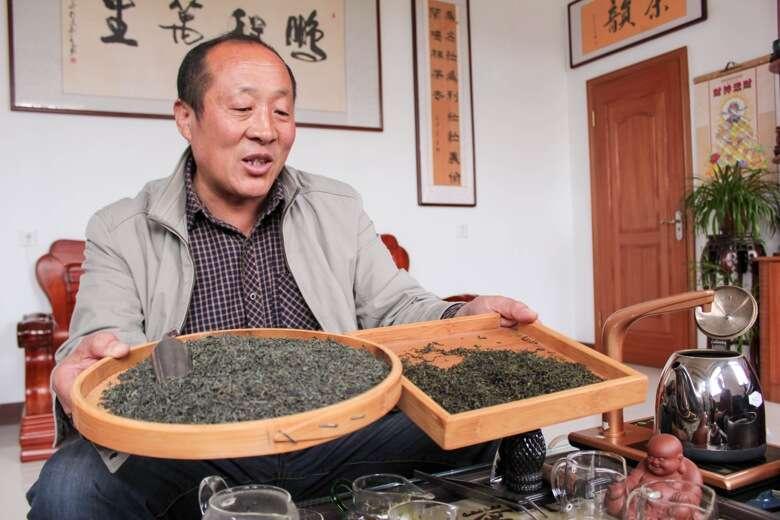 laoshan_1_mrhe_biluochunputong-9653
