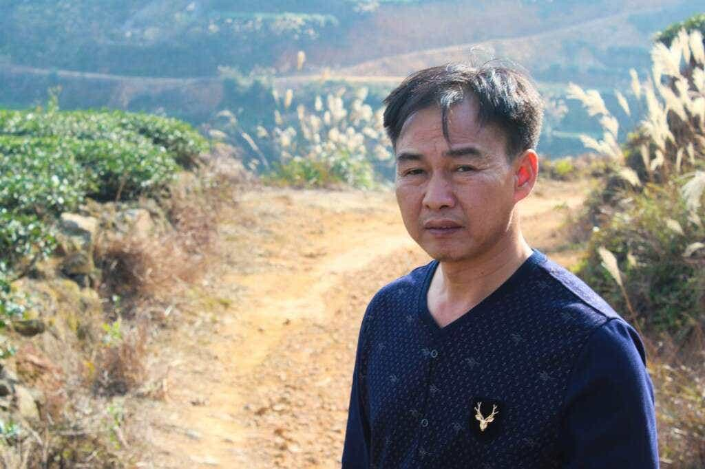 Master Zhang in his tea fields above Daping Village