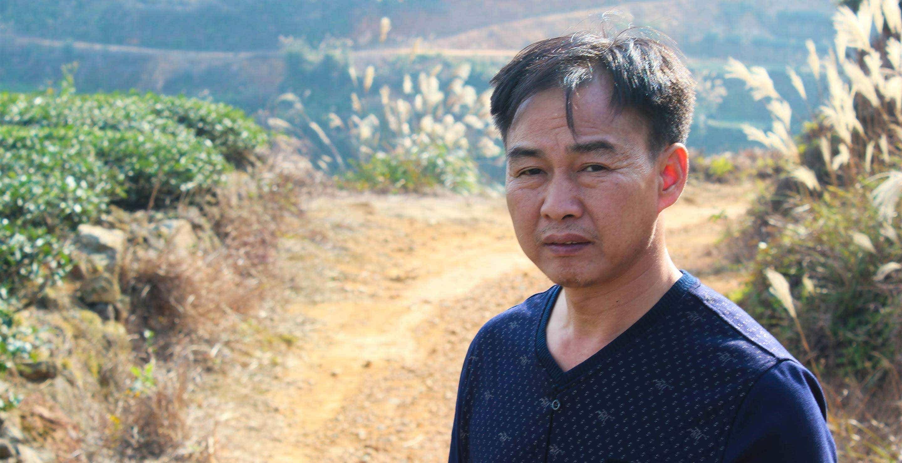 Master Zhang in his family's tea fields above Vaping, Anxi