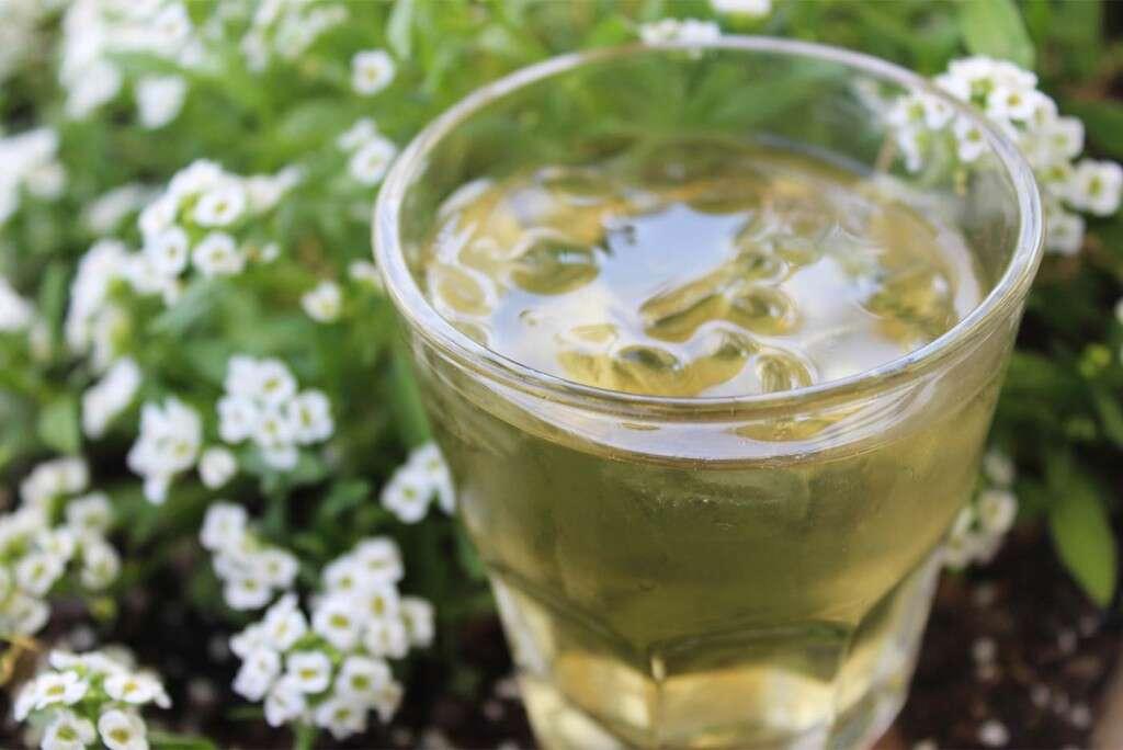 summer-garden-citrus-mint-5262_LARGE-1024x684