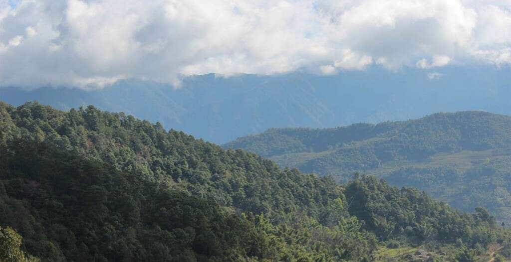 the mountain slopes in Qianjiazhai are covered with old forests of tea trees, bamboo, and evergreens, intersperced with small workshops, coffee farms, stands of banana, wildflowers and corn