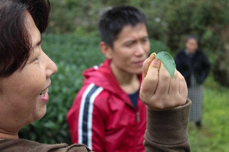 Wang Huimin laughs with Mr. Li in Wuyishan