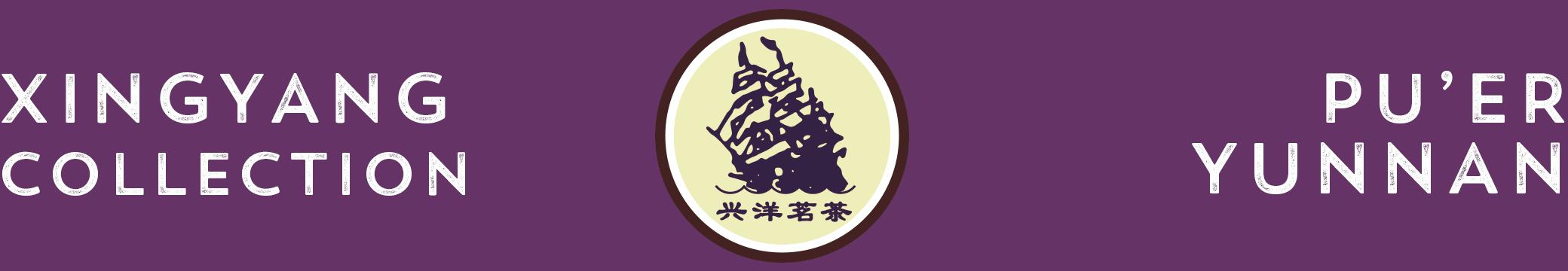 shop-xingyang-banner