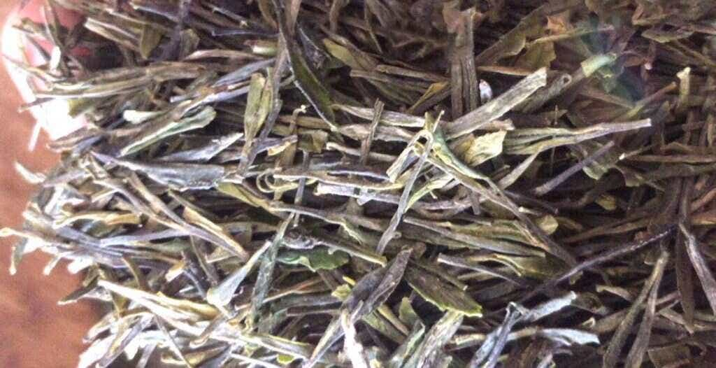 first look: 2019 Reserve Flat Pressed Green tea! // courtesy of He Qingqing