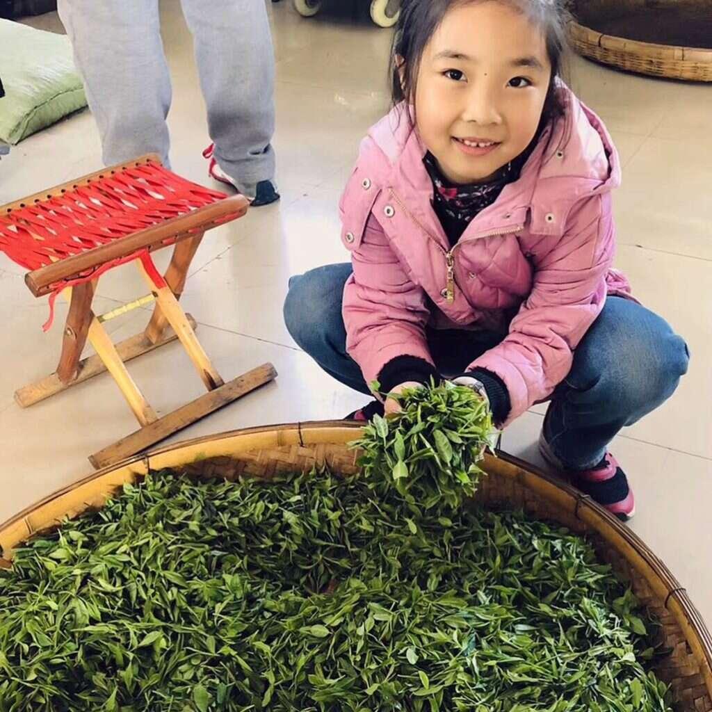 Liu Jiaqi shows off her family's fresh picked green tea // courtesy of He Qingqing