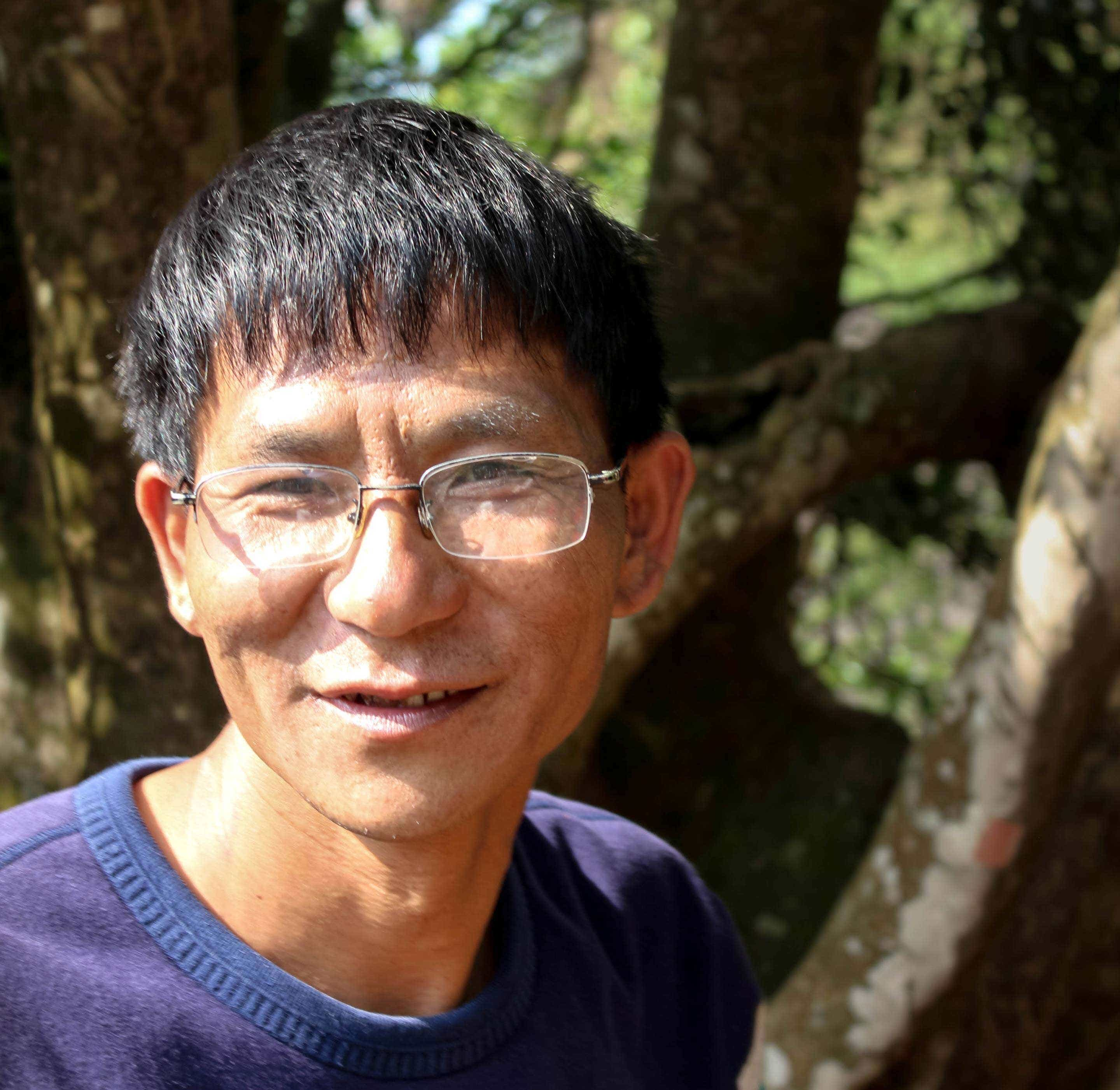 Mr. Zhou visits the Wang Family's giant tea tree