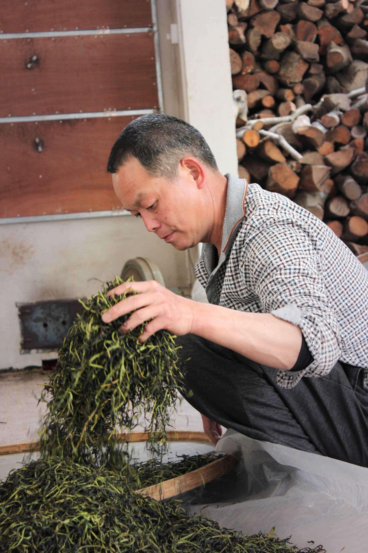 Ming Zhen works with fresh leaves to make black tea