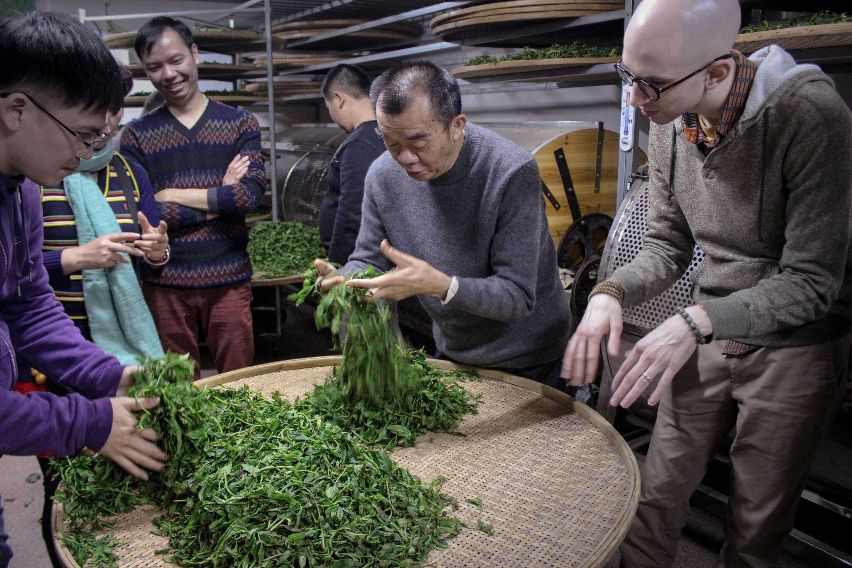 fenghuang-workshop-9468