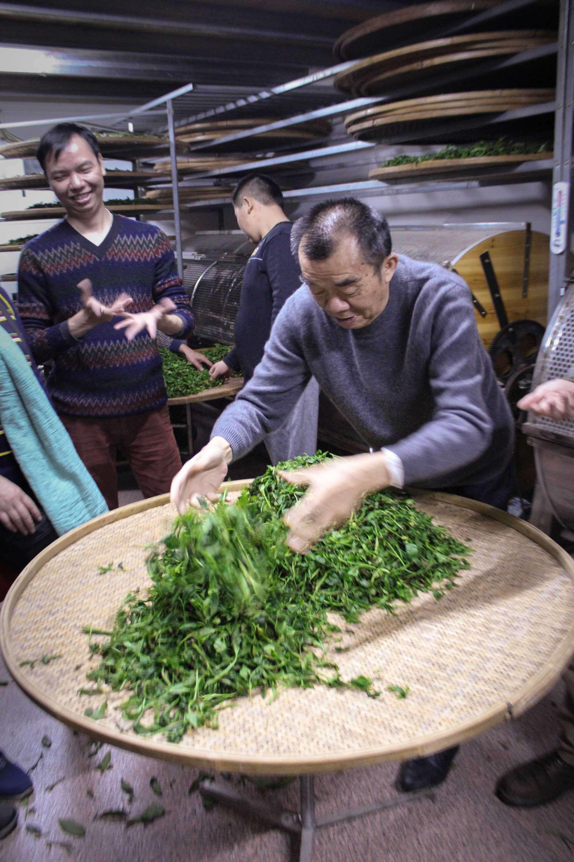 fenghuang-workshop-9484