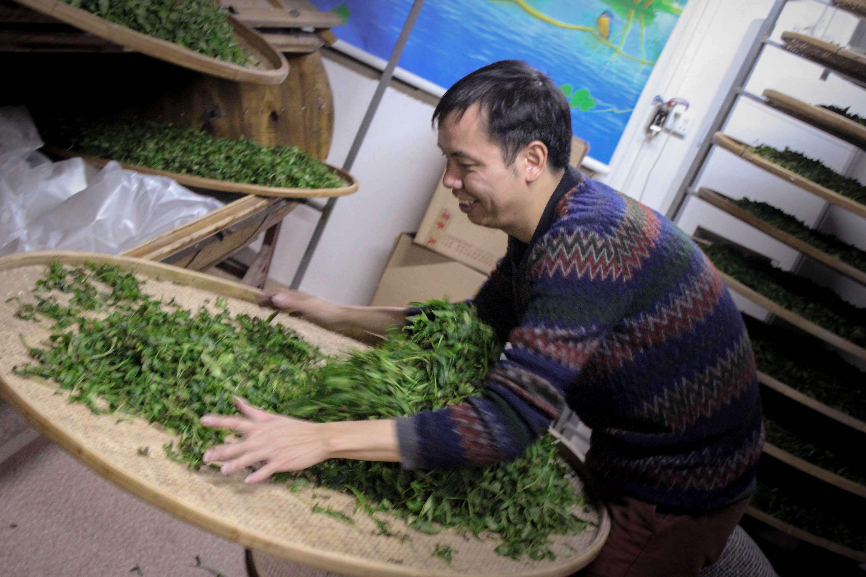 fenghuang-workshop-9541