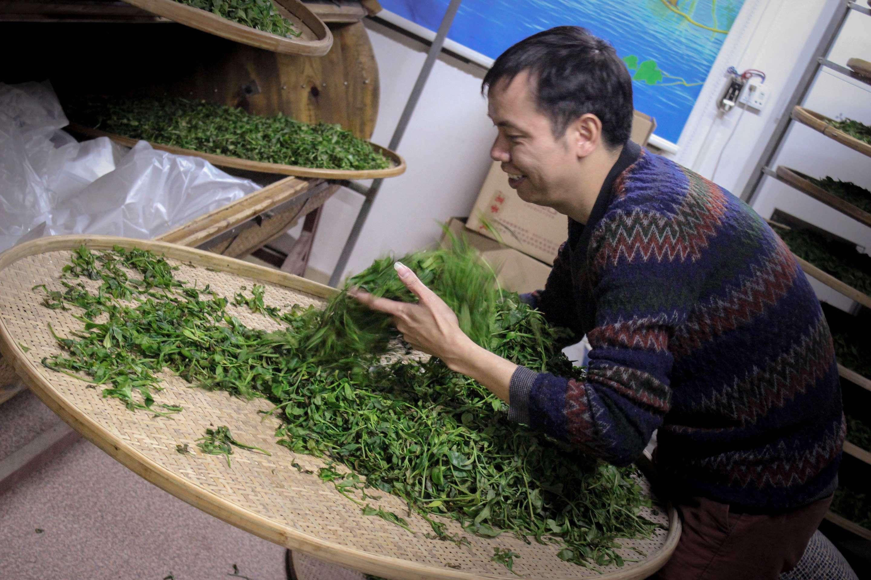 fenghuang-workshop-9542