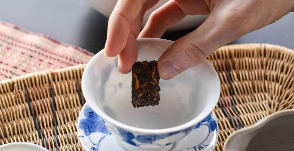 xingyang-honeysuckle-puer-steep-0043-largex2