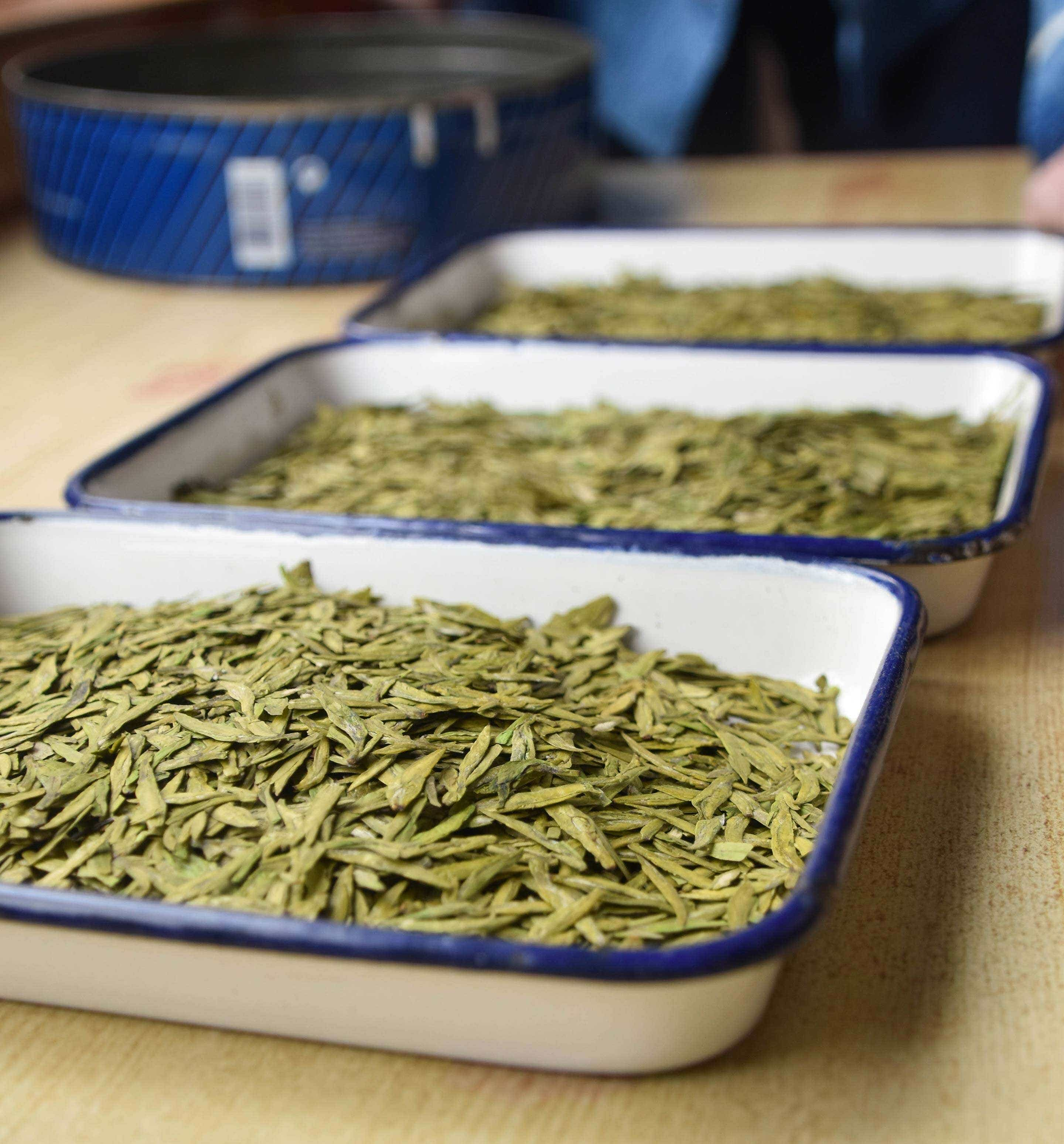 dragonwell-day-2-leaves-longjing-compare-0640-largex2