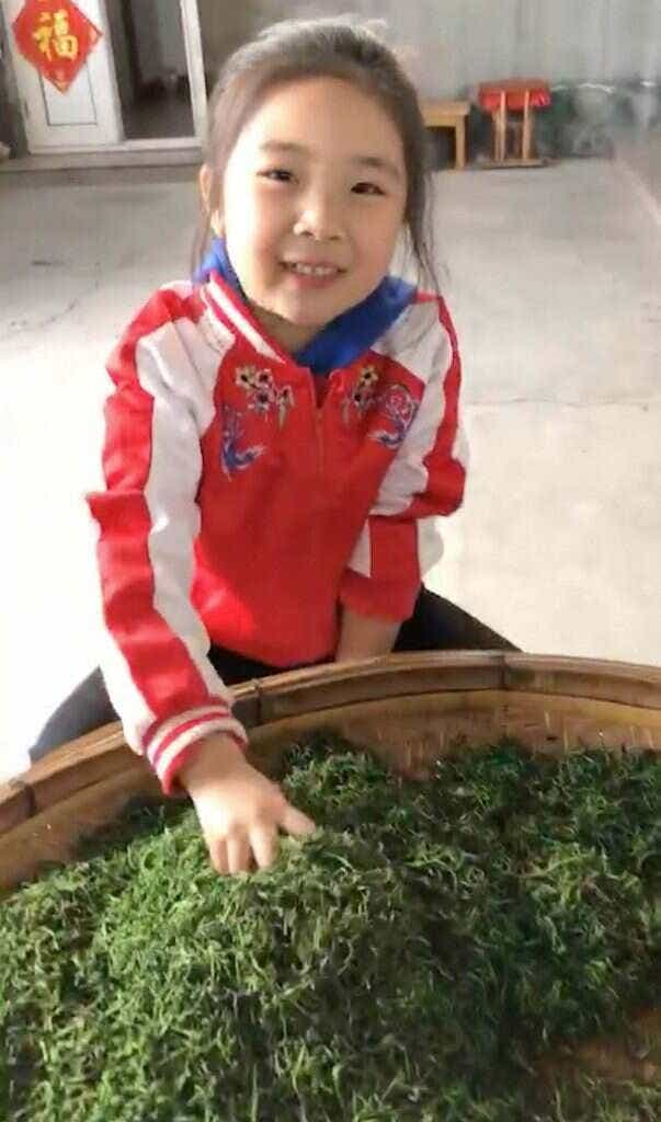 Niu Niu shows off her family's fresh picked 2018 tea // photo courtesy of the He Family