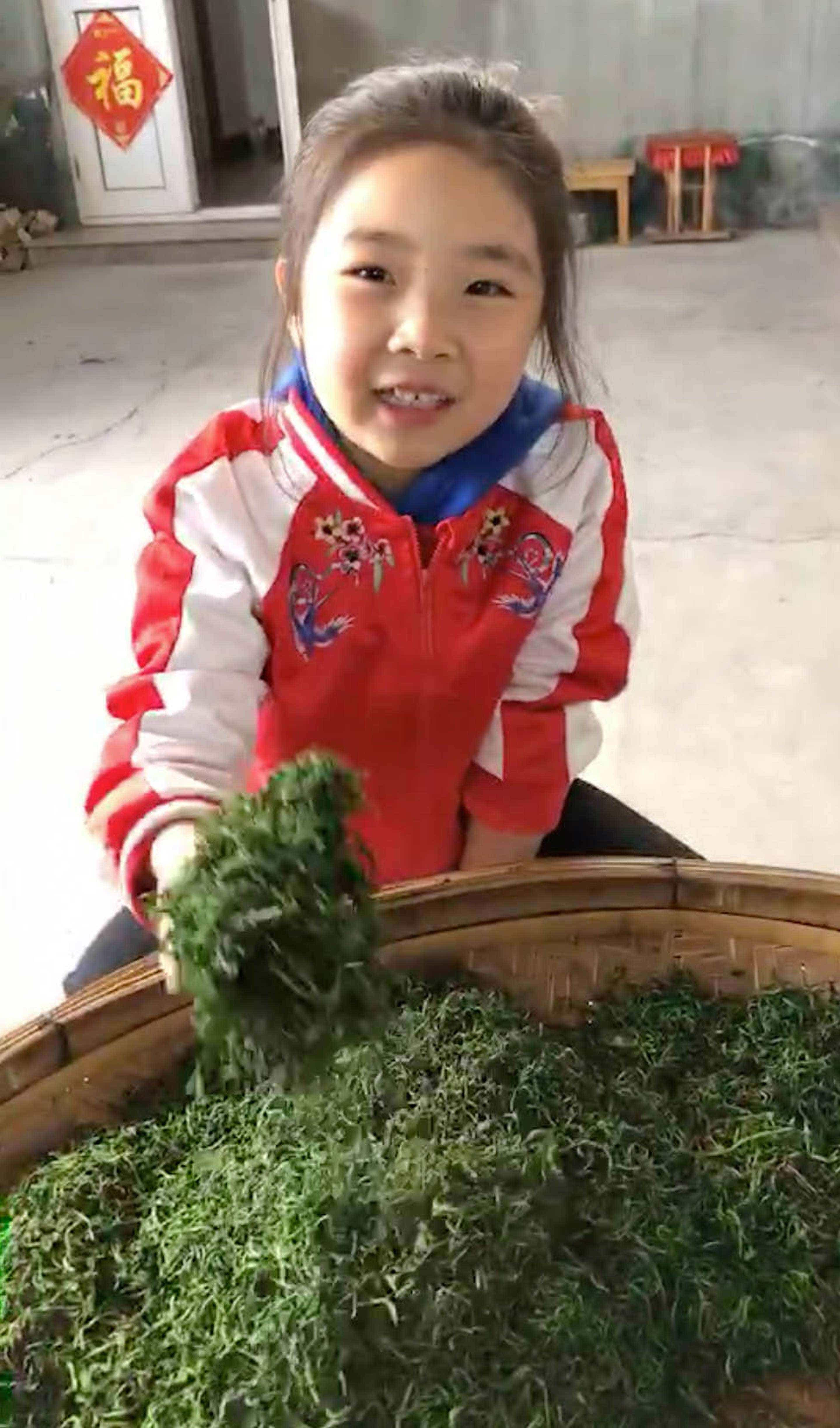 Niu Niu shows off her family's fresh picked 2018 tea // photo courtesy of the He Family