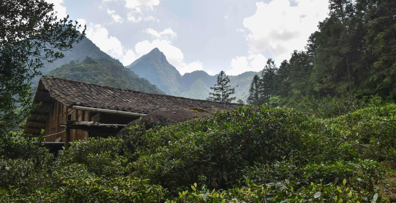 Li Xiangxi's family home in Tongmu