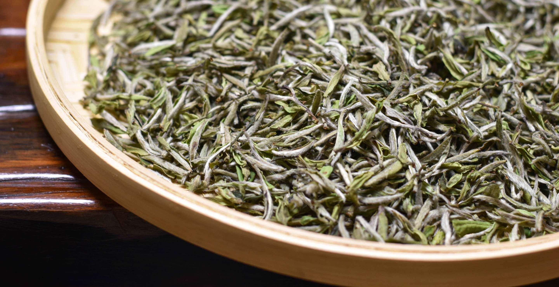 our Bai Mudan white tea