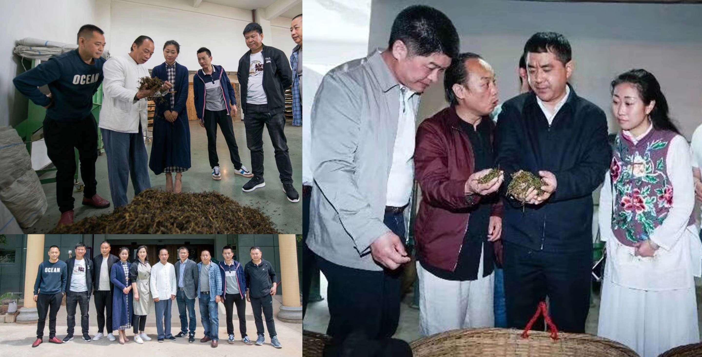 Li Xiangxi welcomes visiting dignitaries while representing Wuyishan's tea heritage