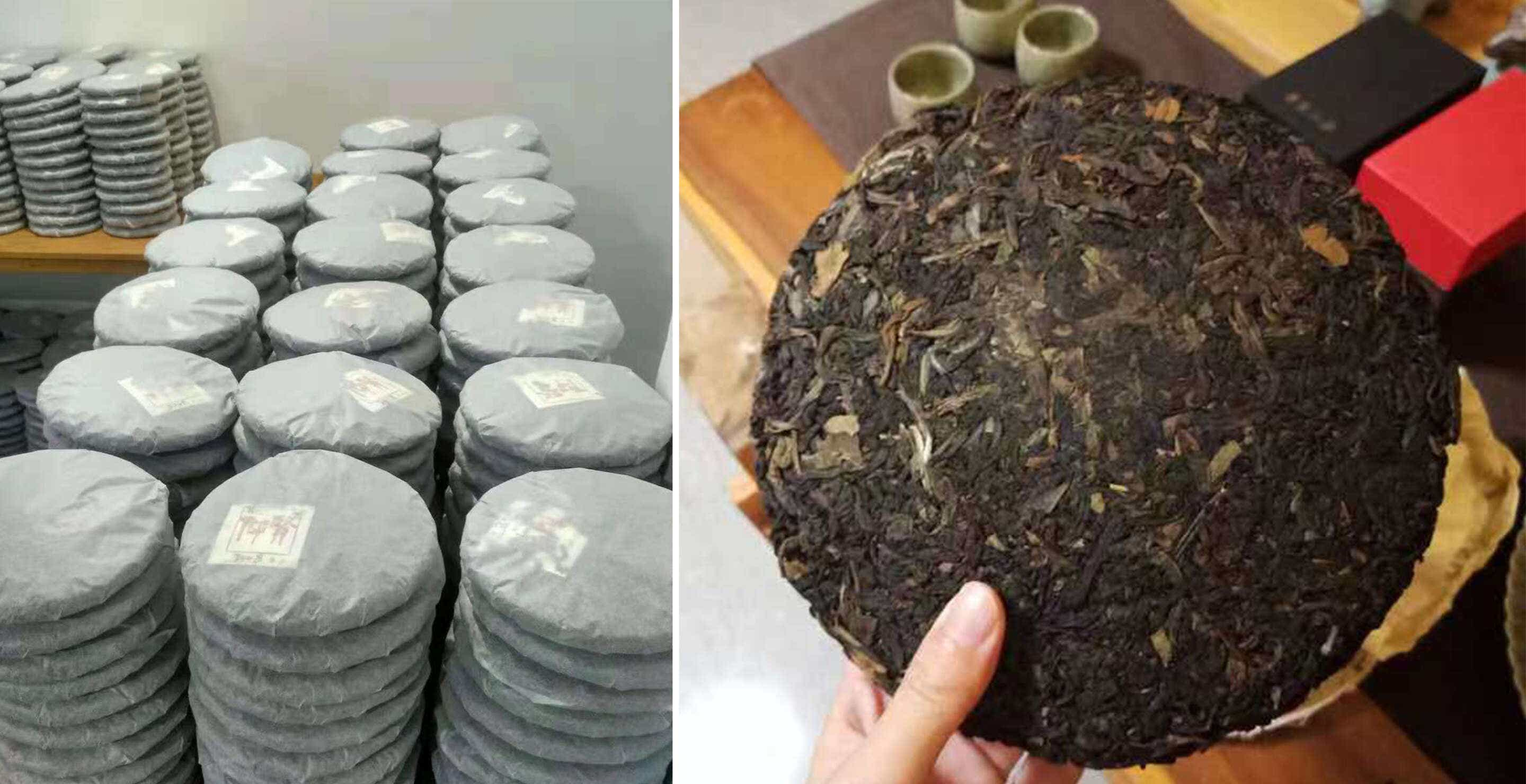 pressed cakes of aged Big Red Robe Wuyi oolong