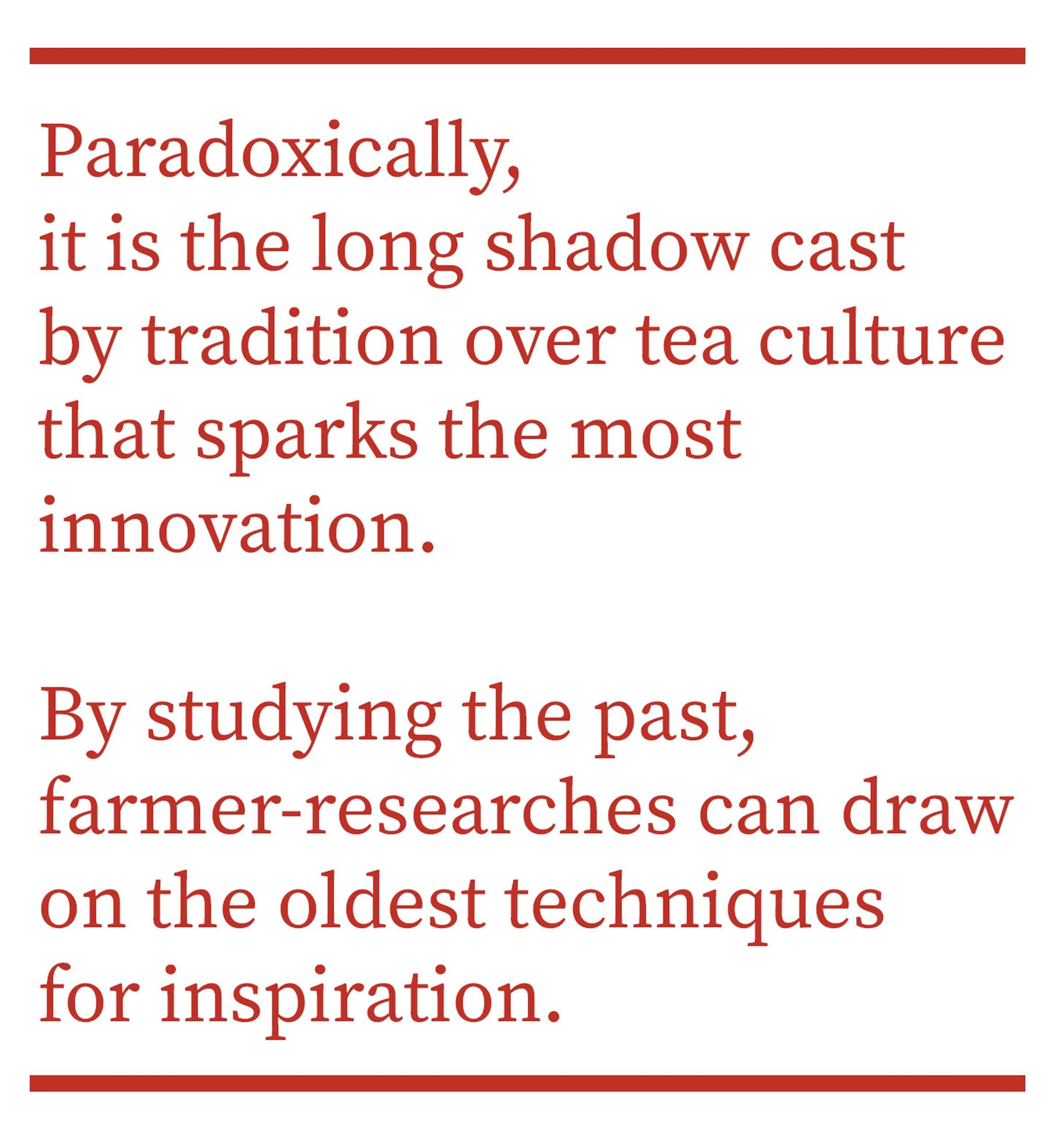 Paradoxically, it is the long shadow cast by tradition over tea culture that sparks the most innovation. By studying the past, farmer-researchers can draw on the oldest techniques for inspiration.