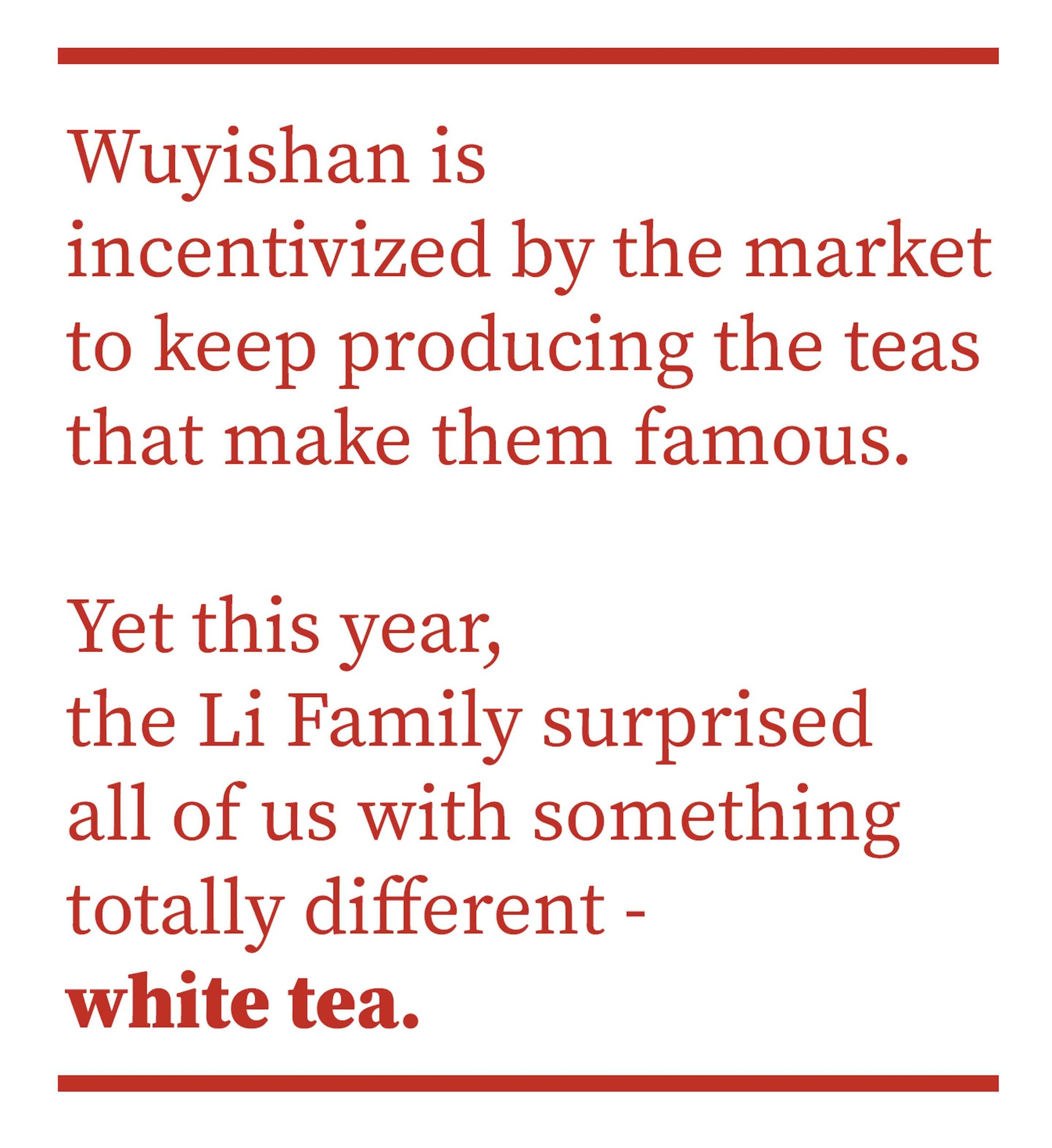 Wuyishan is incentivized by the market to keep producing the teas that make them famous. Yes this year, the Li Family surprised us with something totally different - white tea.
