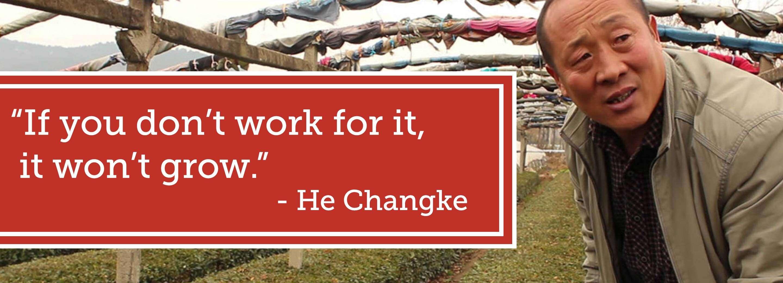 """If you don't work for it, [the tea] won't grow"" - He Changke"
