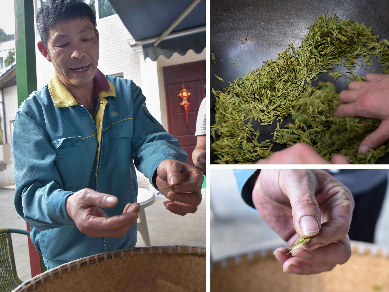 Shui Huamin with fresh spring tea