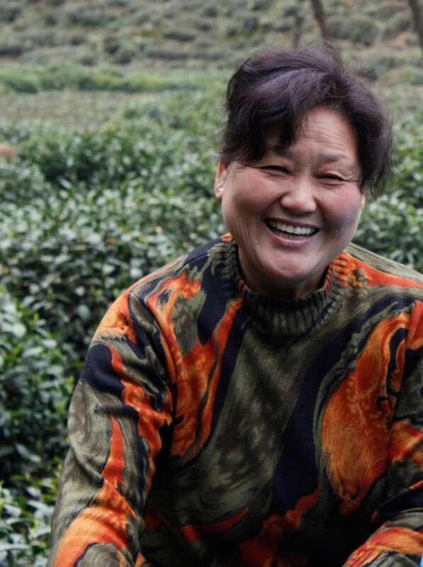 Longjing Tea Mrs Li-7580